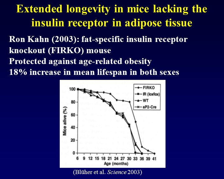 Extended longevity in mice lacking the insulin receptor in adipose tissue