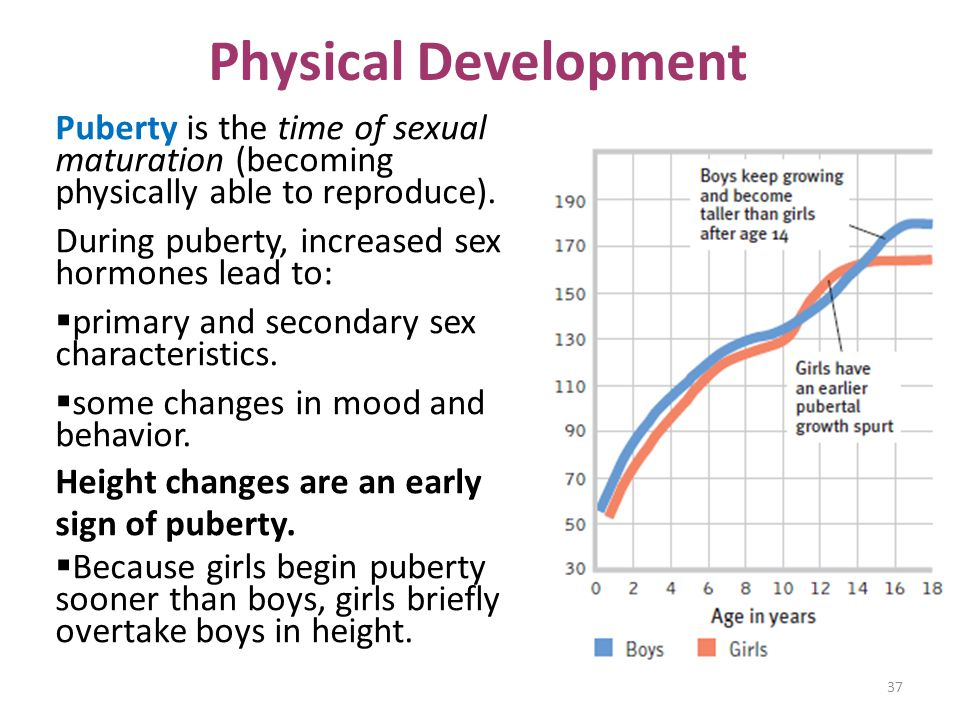 Physical Development Puberty is the time of sexual maturation (becoming physically able to reproduce).
