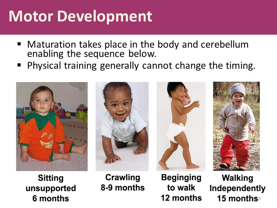 Motor Development Maturation takes place in the body and cerebellum enabling the sequence below.