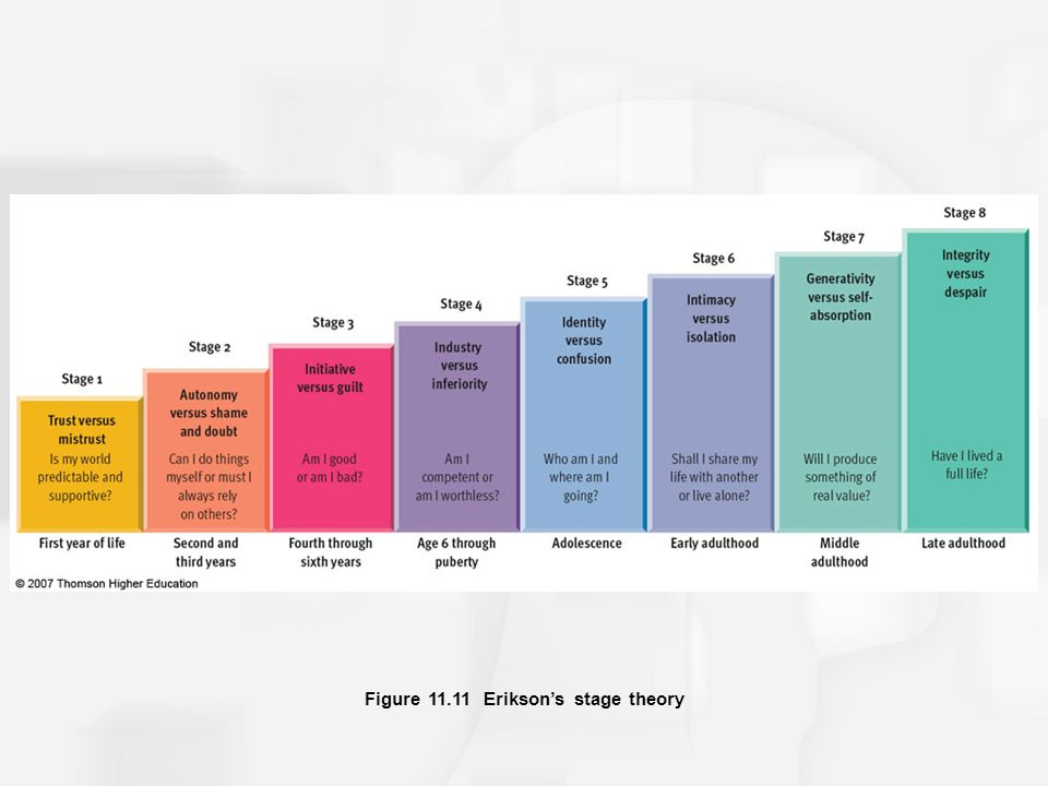 Figure 11.11 Erikson's stage theory