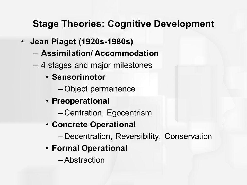 Stage Theories: Cognitive Development