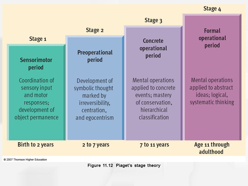 Figure 11.12 Piaget's stage theory