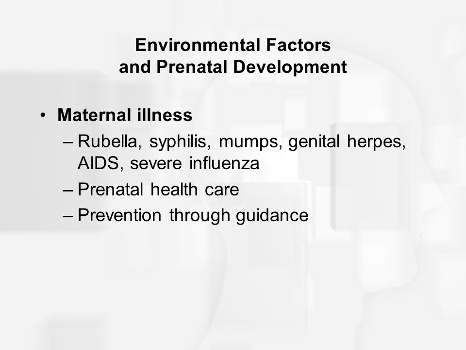 Environmental Factors and Prenatal Development