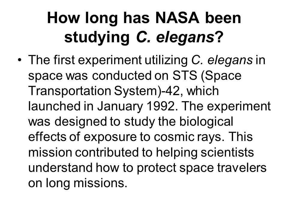 How long has NASA been studying C. elegans