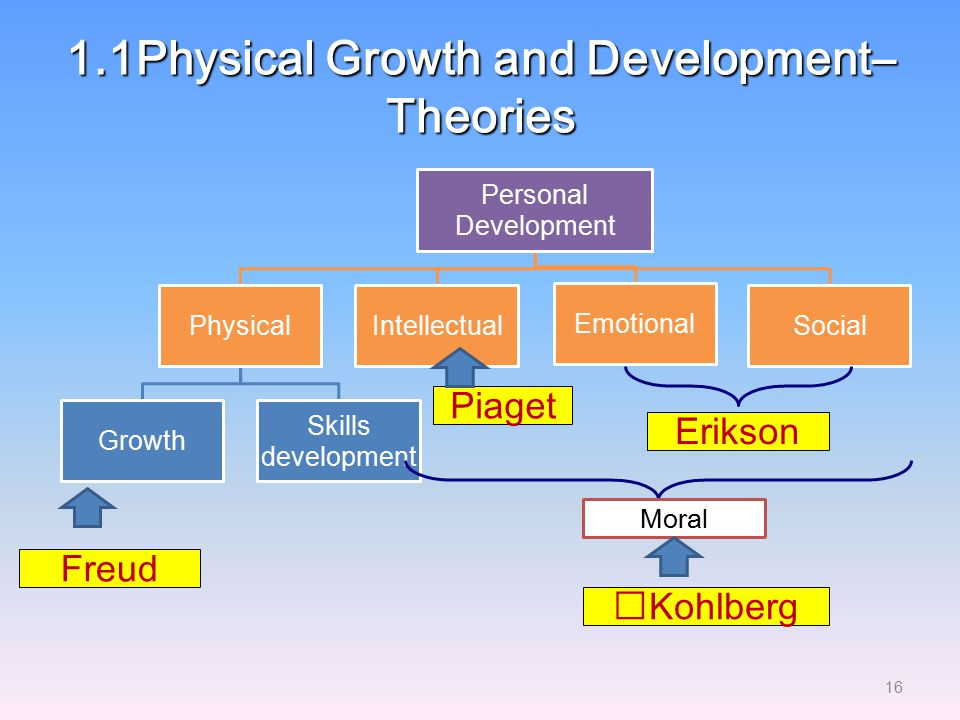 1.1Physical Growth and Development– Theories
