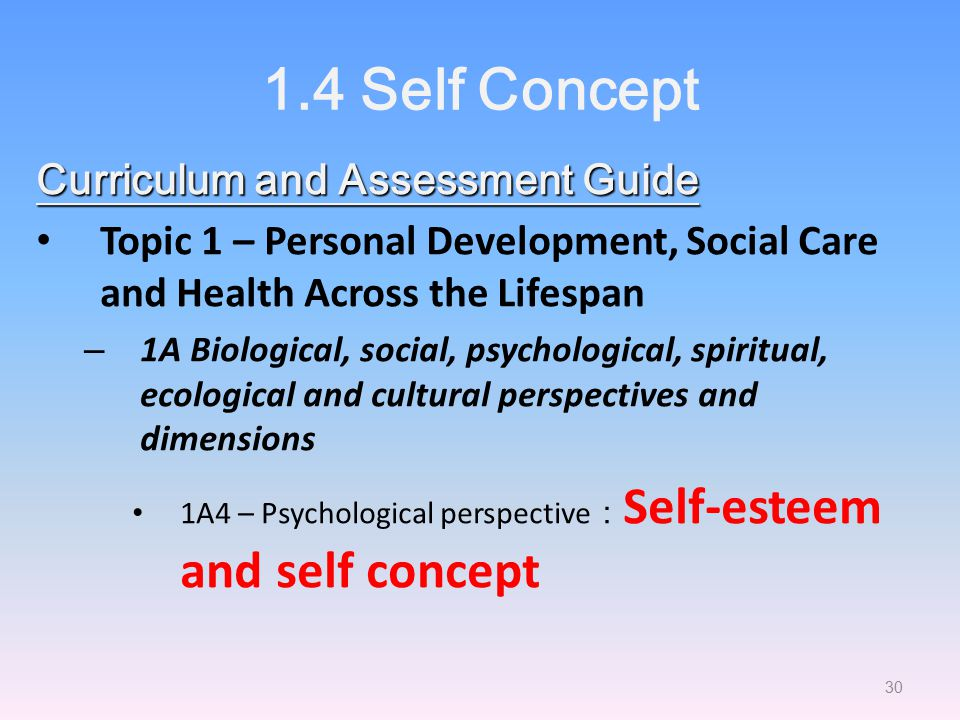 1.4 Self Concept Curriculum and Assessment Guide