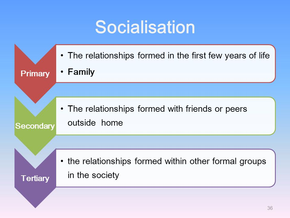 Socialisation The relationships formed in the first few years of life