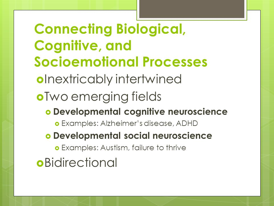 Connecting Biological, Cognitive, and Socioemotional Processes