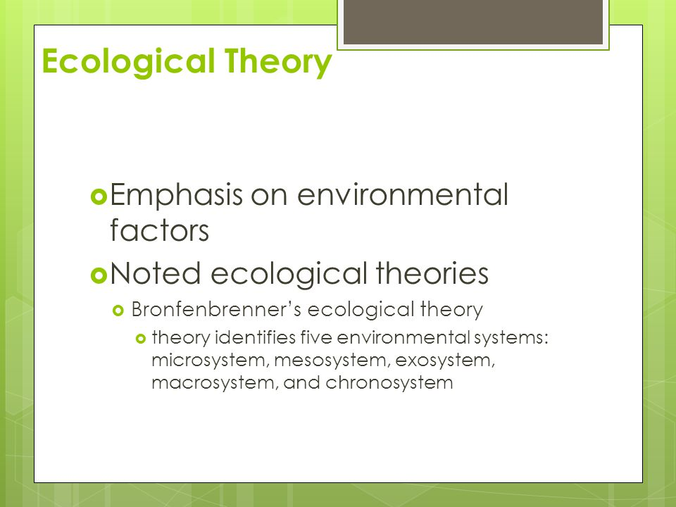 Ecological Theory Emphasis on environmental factors