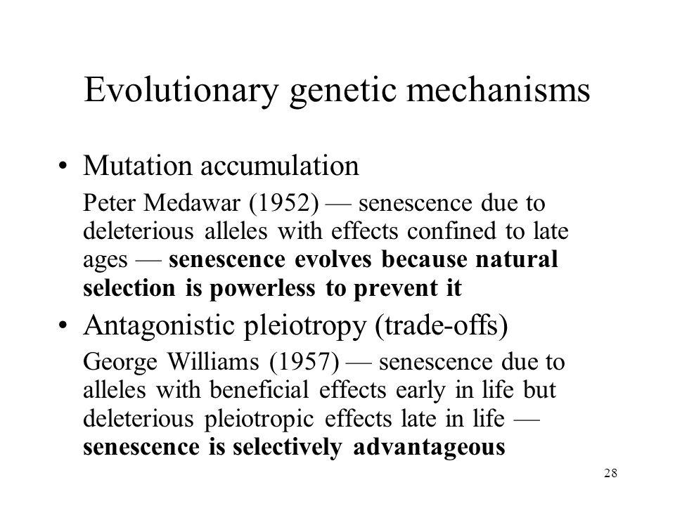 Evolutionary genetic mechanisms