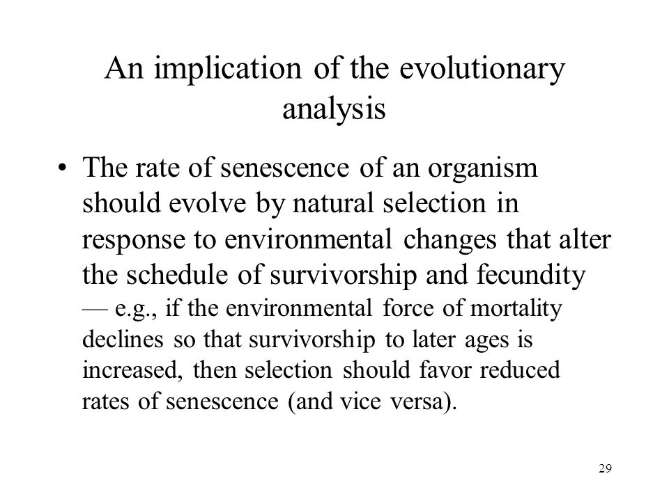 An implication of the evolutionary analysis