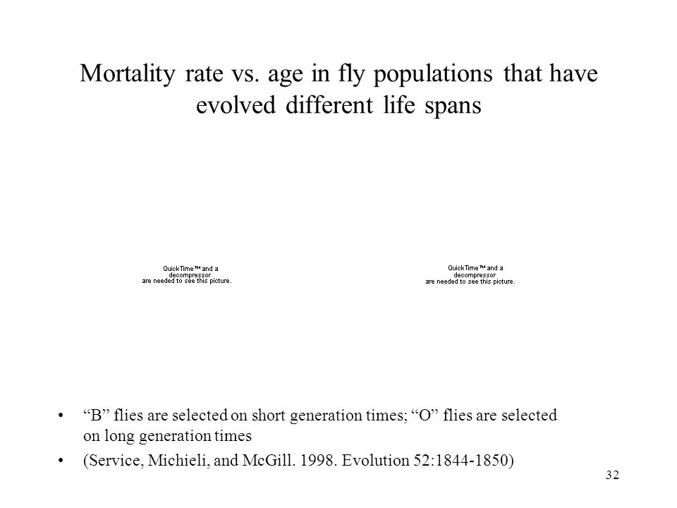Mortality rate vs. age in fly populations that have evolved different life spans
