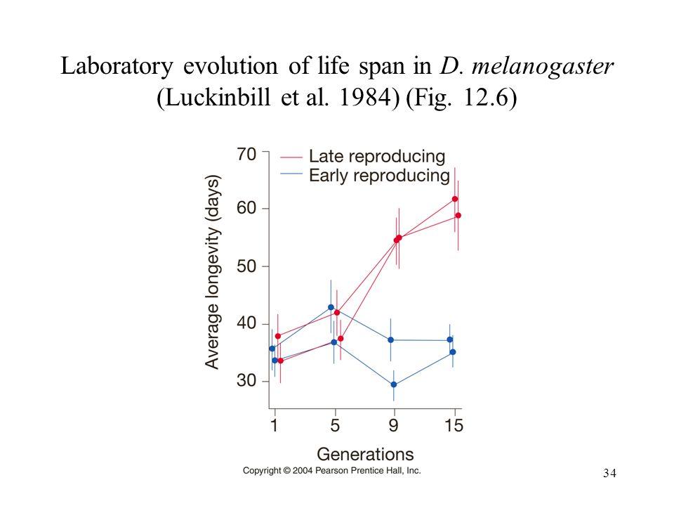 Laboratory evolution of life span in D. melanogaster (Luckinbill et al