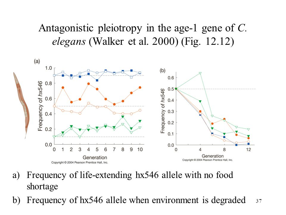 Antagonistic pleiotropy in the age-1 gene of C. elegans (Walker et al