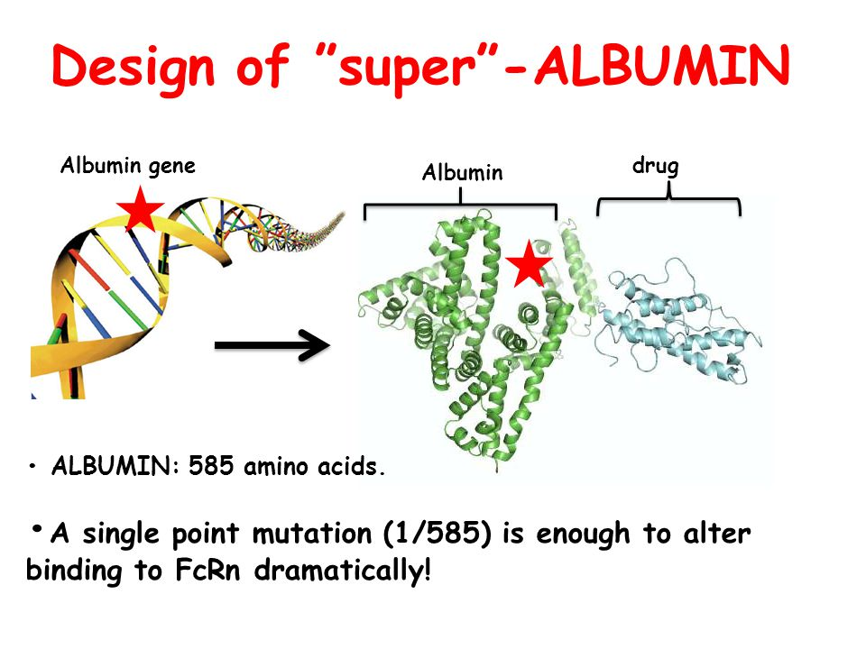 Design of super -ALBUMIN