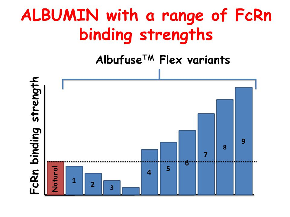 ALBUMIN with a range of FcRn binding strengths