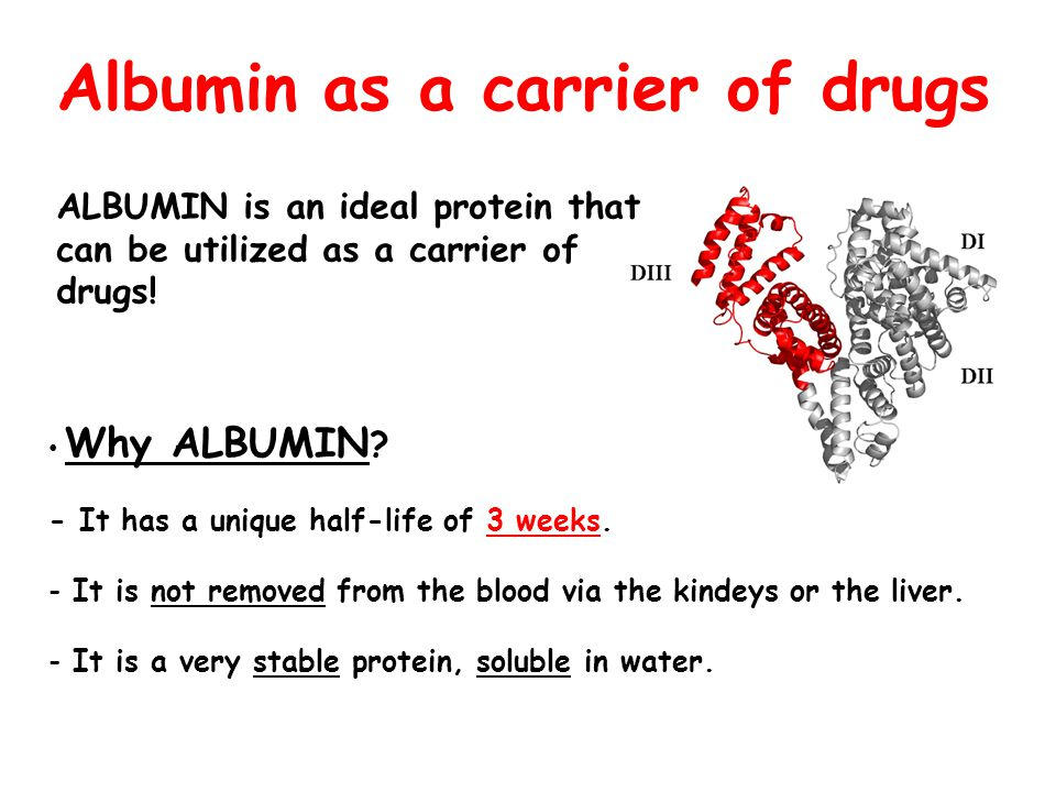 Albumin as a carrier of drugs