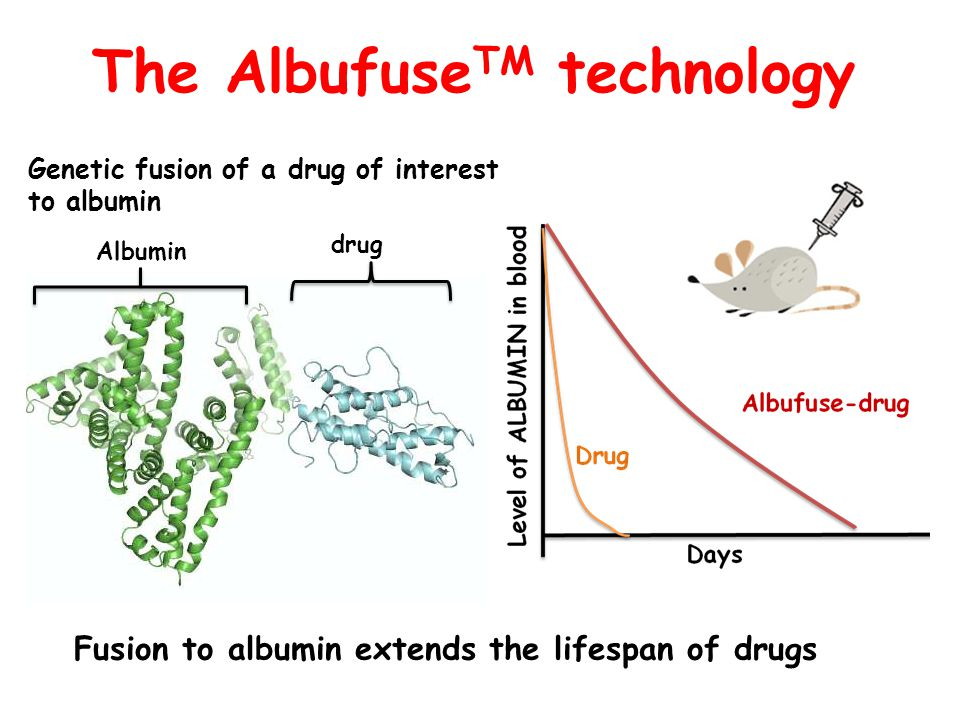 The AlbufuseTM technology