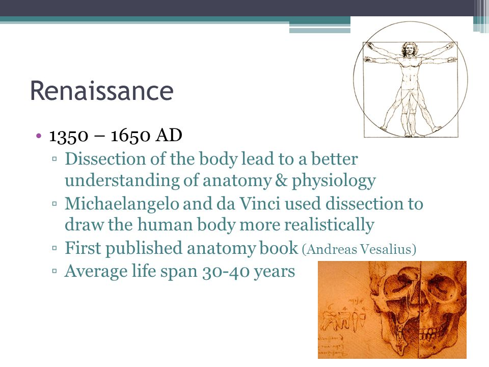 Renaissance 1350 – 1650 AD. Dissection of the body lead to a better understanding of anatomy & physiology.