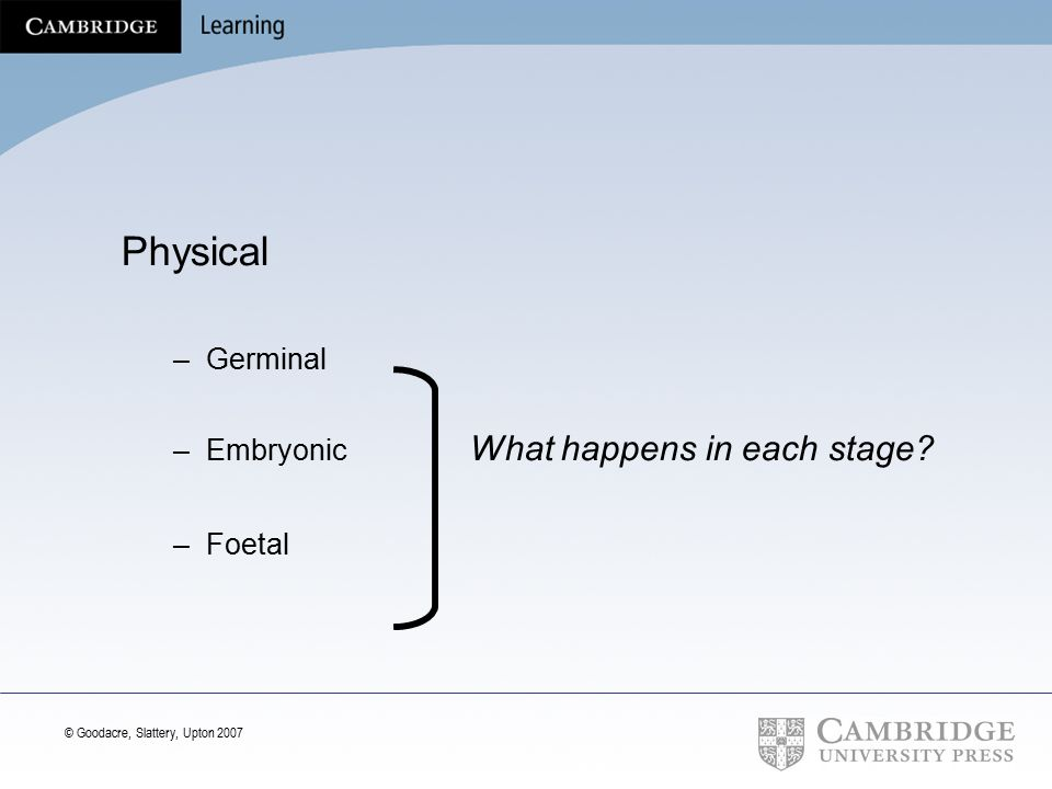 Physical Germinal Embryonic What happens in each stage Foetal