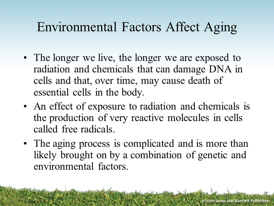 Environmental Factors Affect Aging