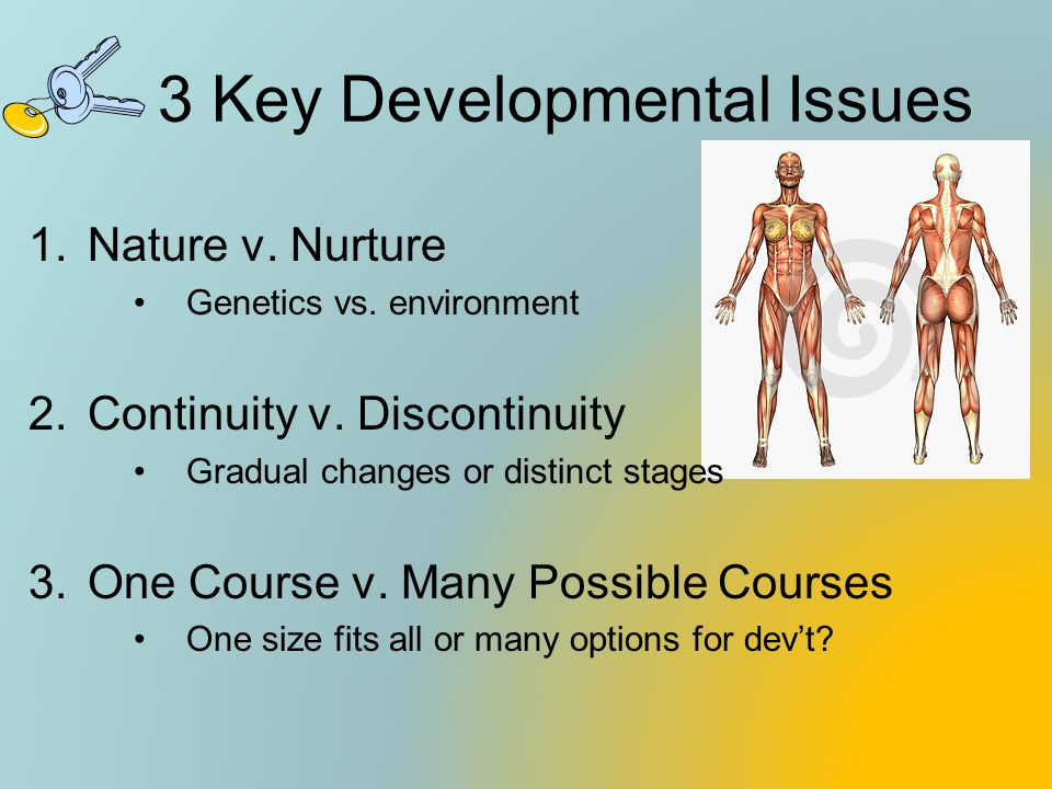 3 Key Developmental Issues