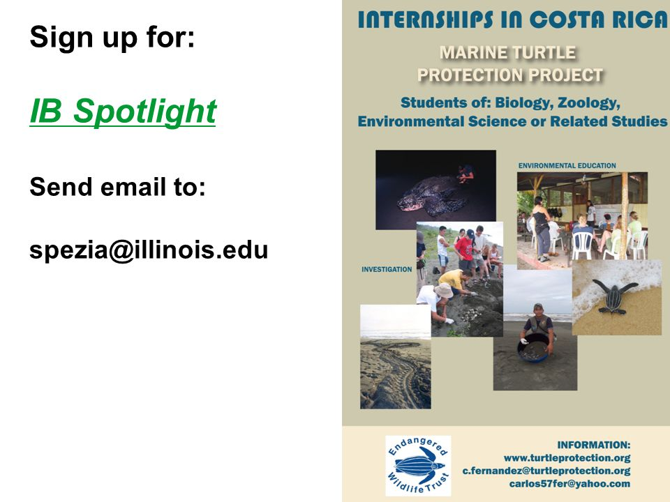 Sign up for: IB Spotlight Send email to: spezia@illinois.edu