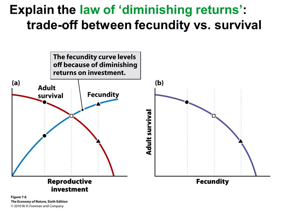explain how the law of diminishing The law of diminishing returns states that a production output has a diminishing increase due to the increase in one input while the other inputs remain fixed.