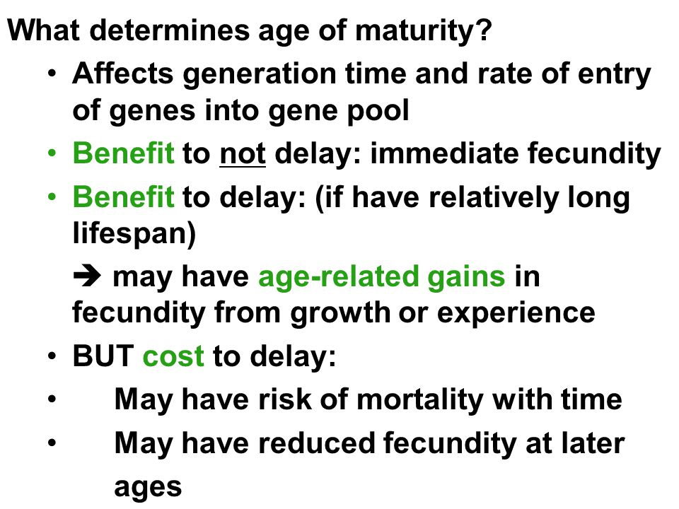 What determines age of maturity