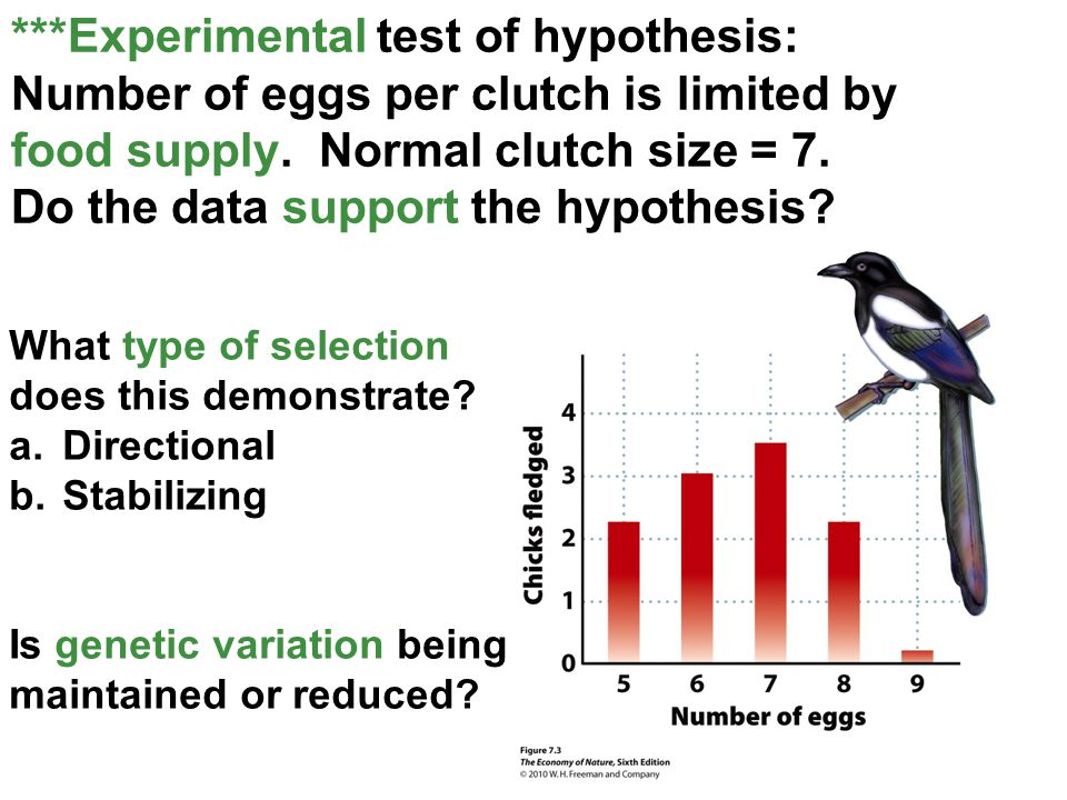 ***Experimental test of hypothesis: Number of eggs per clutch is limited by food supply. Normal clutch size = 7. Do the data support the hypothesis