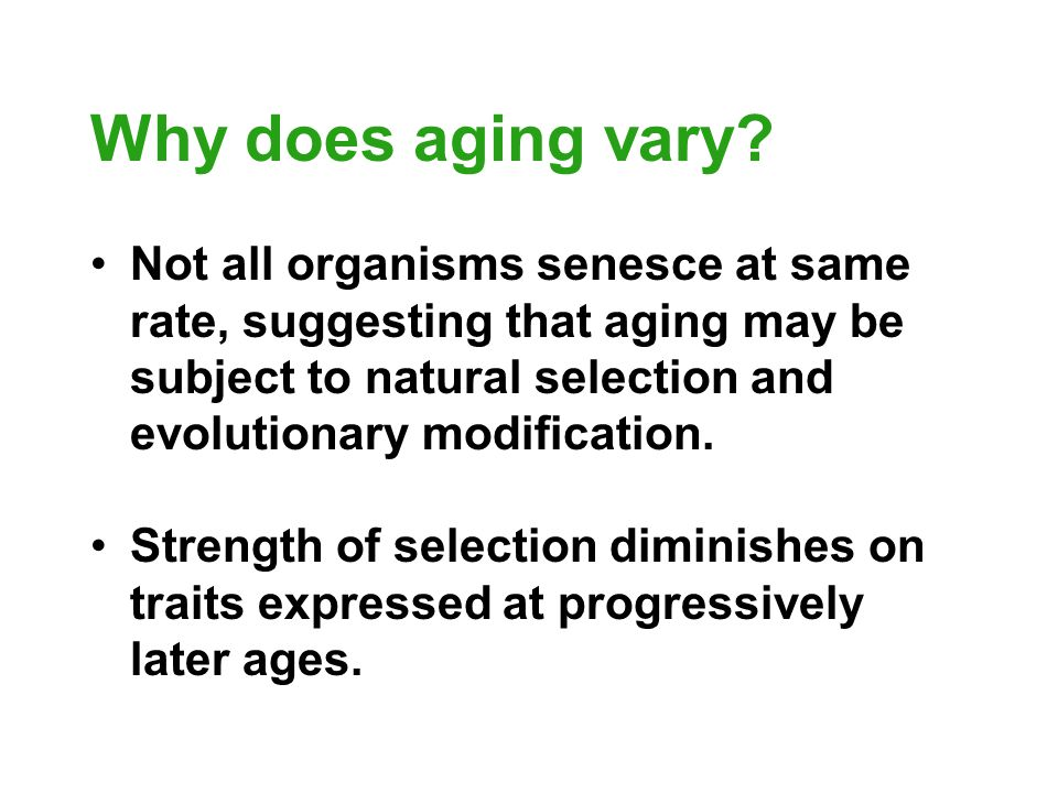 Why does aging vary Not all organisms senesce at same rate, suggesting that aging may be subject to natural selection and evolutionary modification.