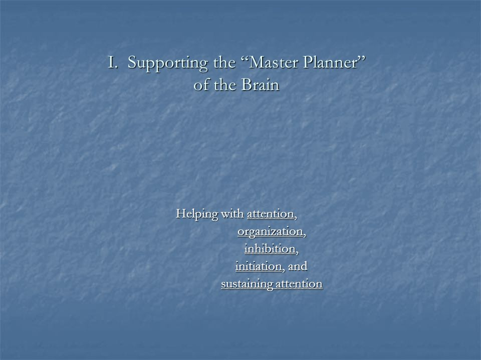 I. Supporting the Master Planner of the Brain