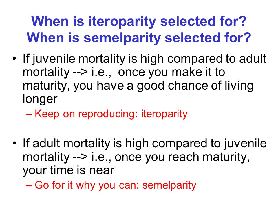 When is iteroparity selected for When is semelparity selected for
