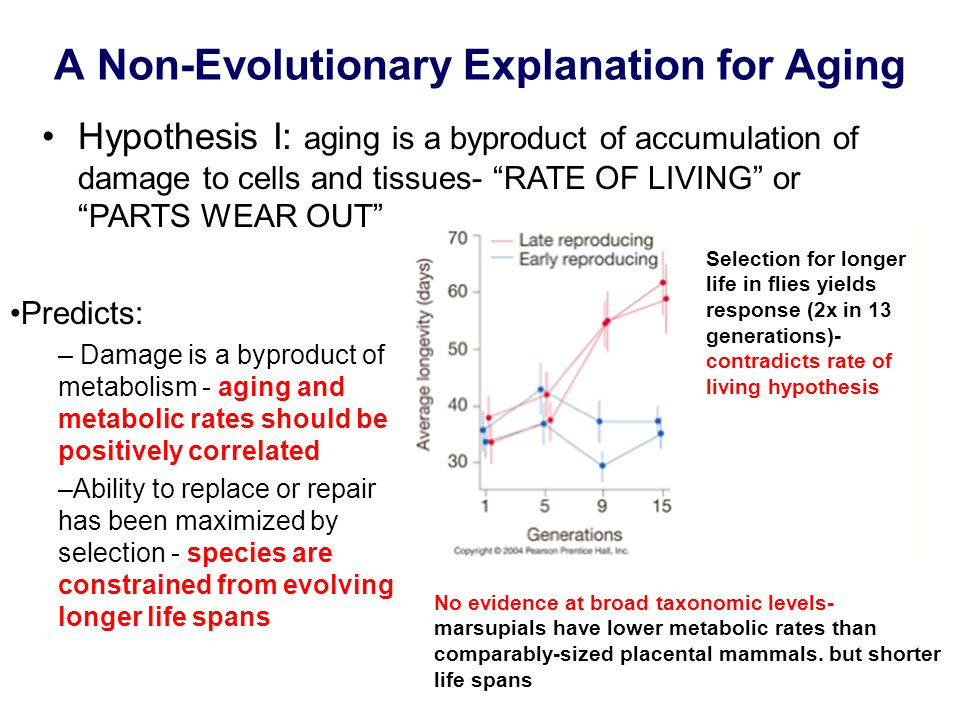 A Non-Evolutionary Explanation for Aging