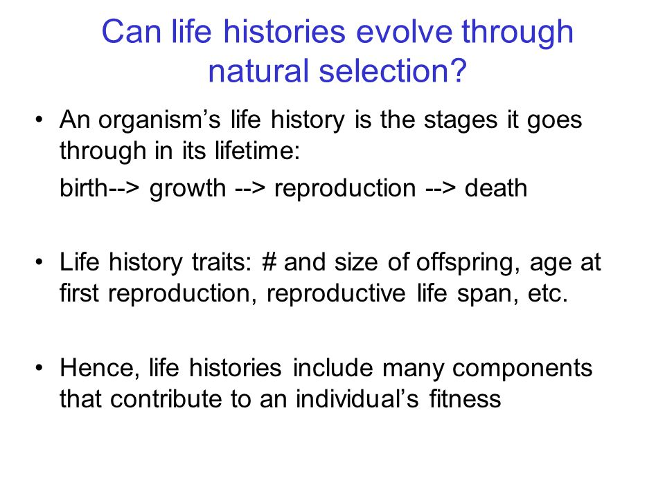Can life histories evolve through natural selection