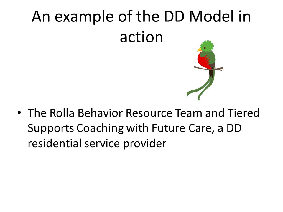 An example of the DD Model in action