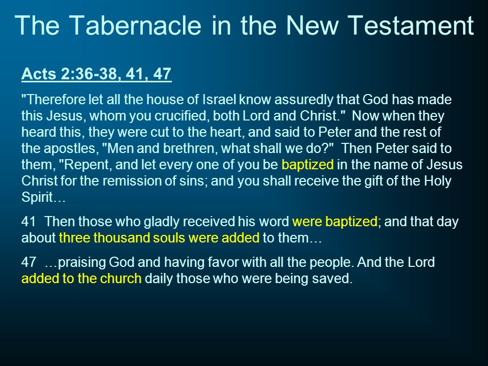 The Tabernacle in the New Testament
