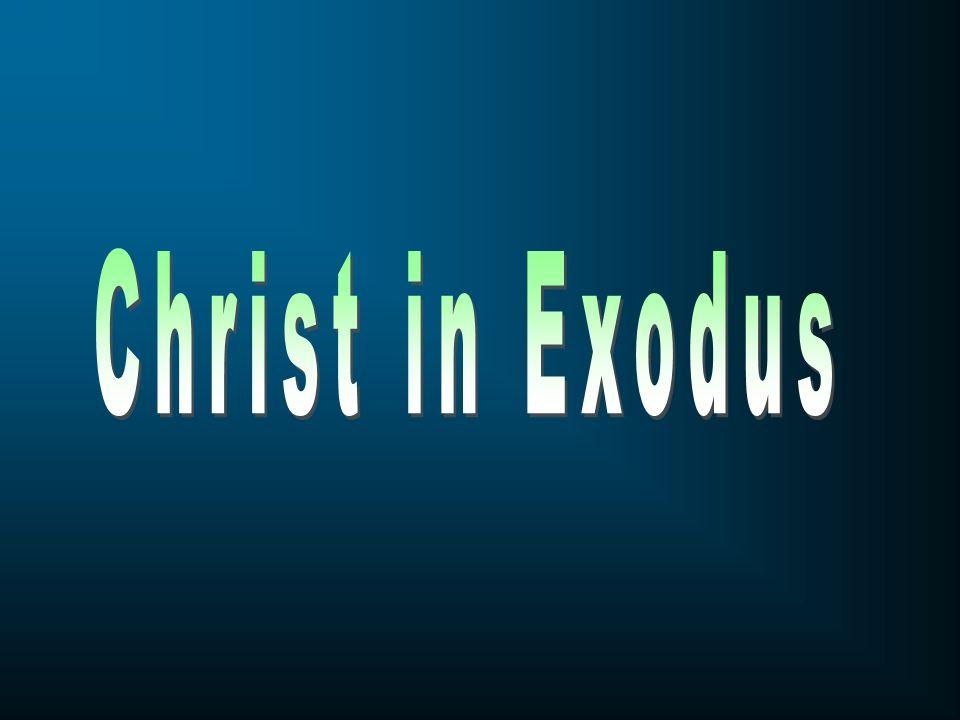 Christ in Exodus