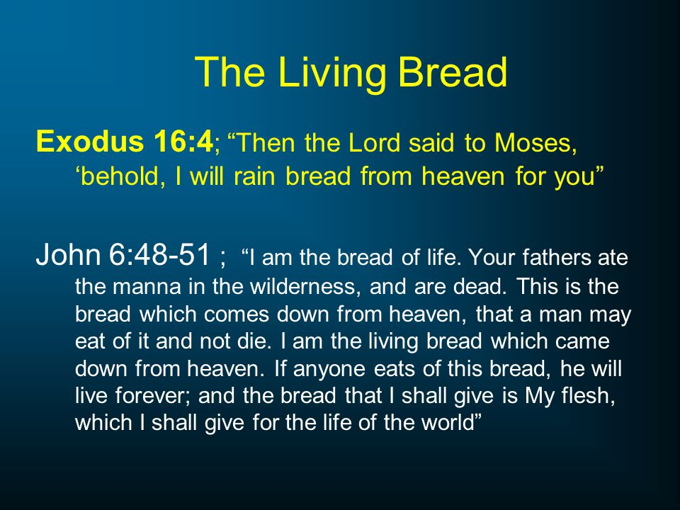 The Living Bread Exodus 16:4; Then the Lord said to Moses, 'behold, I will rain bread from heaven for you