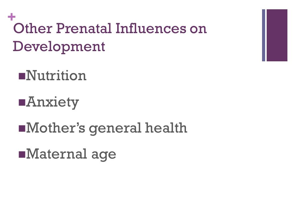 Other Prenatal Influences on Development