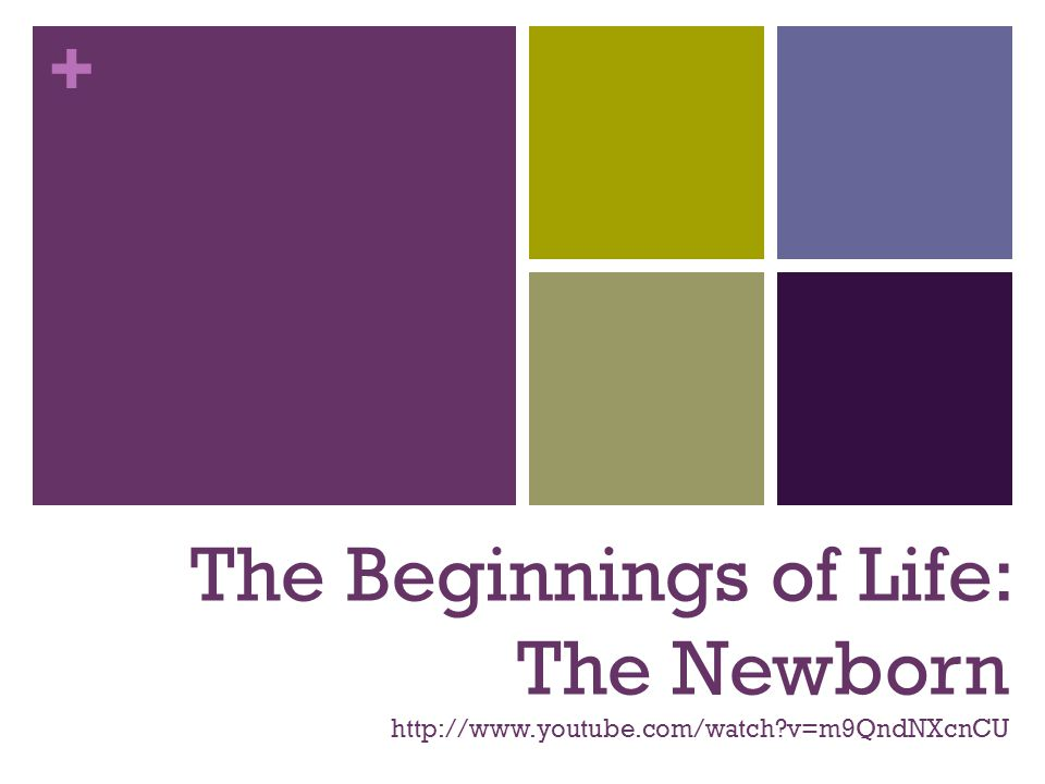 The Beginnings of Life: The Newborn http://www. youtube. com/watch