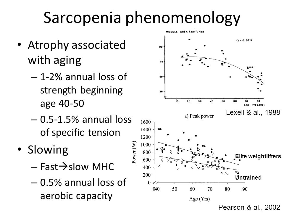 Sarcopenia phenomenology