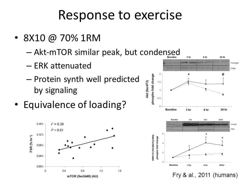 Response to exercise 8X10 @ 70% 1RM Equivalence of loading
