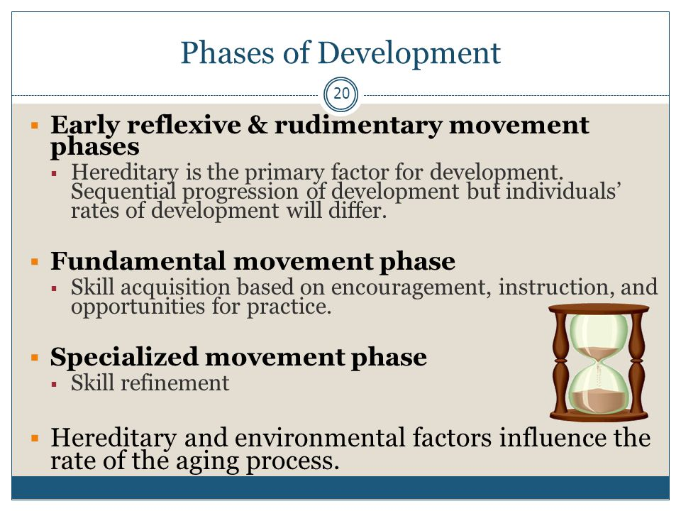 Phases of Development Early reflexive & rudimentary movement phases.