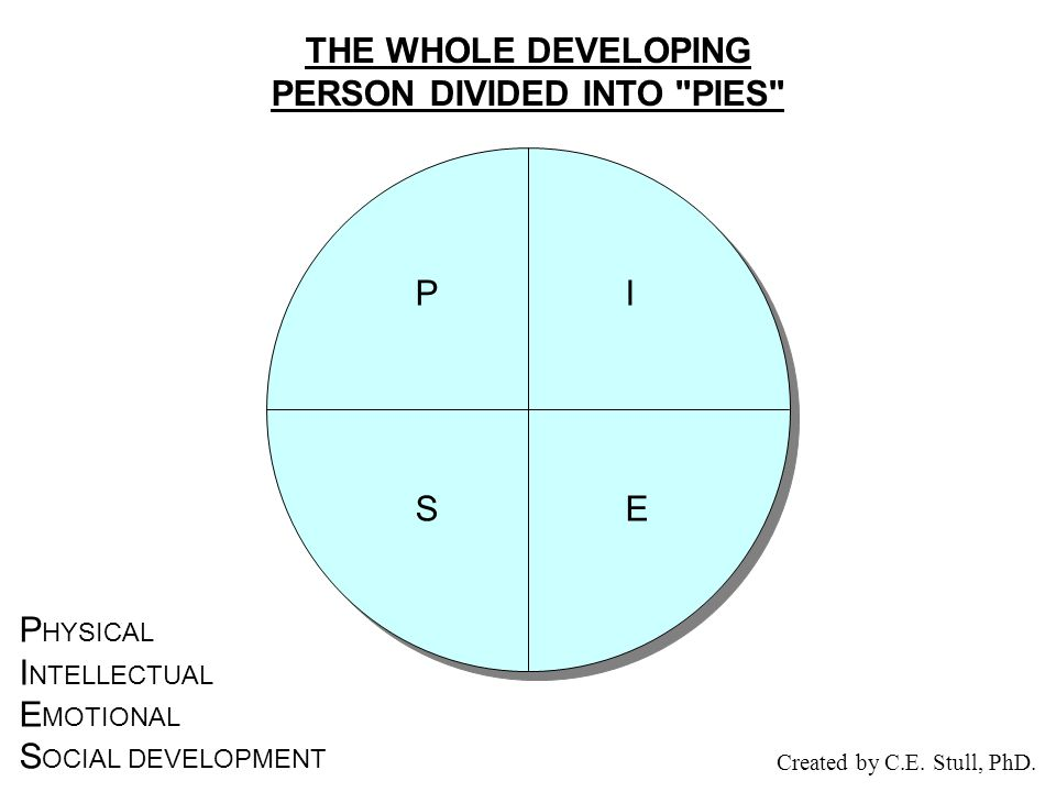 THE WHOLE DEVELOPING PERSON DIVIDED INTO PIES