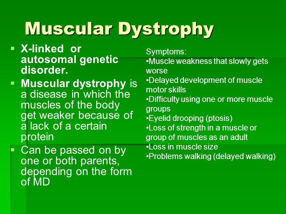 Muscular Dystrophy X-linked or autosomal genetic disorder.