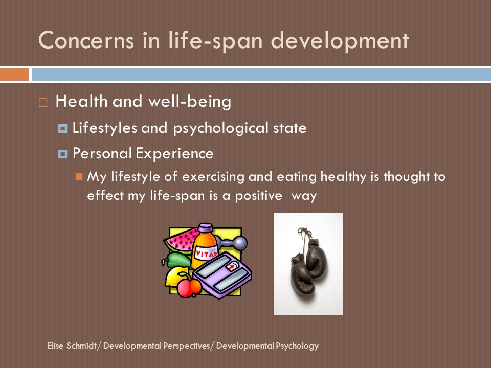 Concerns in life-span development