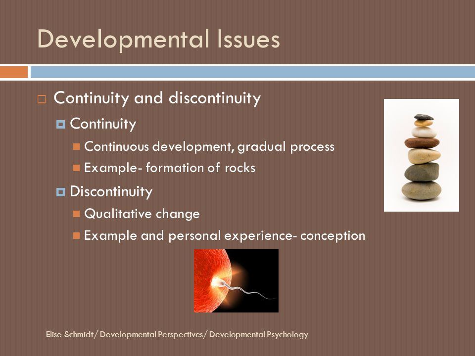 Developmental Issues Continuity and discontinuity Continuity