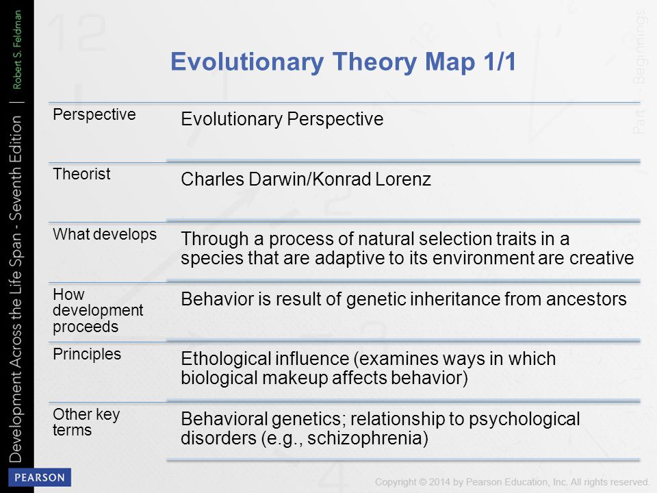 Evolutionary Theory Map 1/1