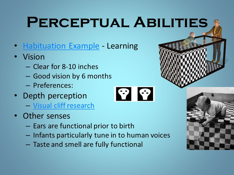 Perceptual Abilities Habituation Example - Learning Vision